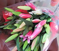 ご退職の花束 - ユリ 百合 ゆり 魚沼農場の日々