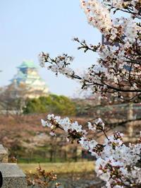 大阪城 - 一級建築士事務所ベンワークスのブログ