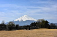 八木崎公園 - 風とこだま