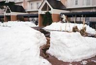 管理人の雪割り作業と自由気ままに通る小路 - 照片画廊