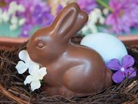 間もなく復活祭 (Buona Pasqua!) - エミリアからの便り