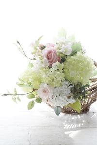 春です!生徒さんたち、お帰りなさーい。 - お花に囲まれて