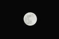 2018.3.31 月に願いを【Blue moon】 - 青空に浮かぶ月を眺めながら