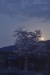 明日香で月を愛でる^^@ Hさんに御礼の一枚 - 東大寺が大好き