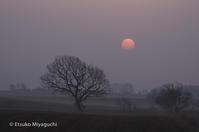 赤い太陽 - ekkoの --- four seasons --- 北海道