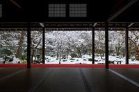 雪の京都2018圓光寺の雪景色 - 花景色-K.W.C. PhotoBlog