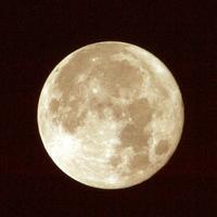 グレープフルーツ・ムーンの夜 ── 世界中の誇り高き酔いどれとヴァガボンド・シューズを履く者とかわいそうなレイン・ドッグどものために ♯002 - Signifié/Signifiant