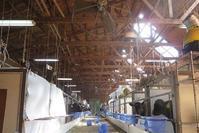 仔牛に点滴 - 小比類巻家畜診療サービスの牧場日誌