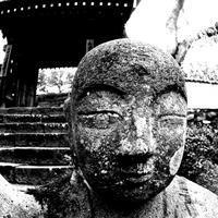 秩父・青雲寺で枝垂れ桜を鑑賞♪ アングルの冒険を試みる! - 『私のデジタル写真眼』
