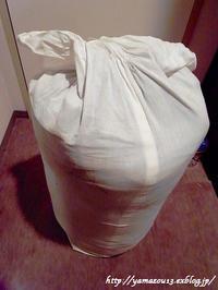 樹皮の保管方法について - ロシアから白樺細工