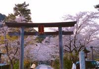 WARPED TOUR JP - 高麗べぇコロコロ