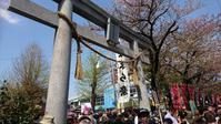 祭2祭かなまら祭at川崎大師 & 春風at代々木公園に行ってきた! - 鴎庵
