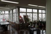 サクラだけじゃない、花見をしよう - 手柄山温室植物園ブログ 『山の上から花だより』