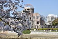 平和記念公園の桜 - できる限り心をこめて・・Ⅲ