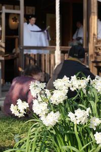 春のお祭り - YAJIS OFFICE BLOG