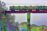 秩父・長瀞荒川橋梁ラフティングも間近で - 『私のデジタル写真眼』