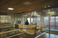 桜島港(旬彩館前) - リンデンバス ~バス停とその先に~