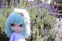 イタリア公園で外撮りPart2 - T's Photo Diary2(Grass Field*)