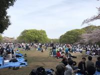 花見 @ 代々木公園 - 5W - www.fivew.jp