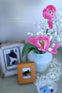 4月の鎮魂 - KICHI,KITCHEN 2