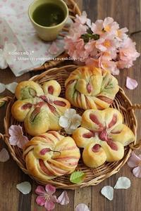 桜餡パン - komorebi*