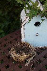 02 April  鳥の巣 - Digital Diary