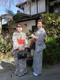 モノトーンのお着物と桜と。 - 京都嵐山 着物レンタル&着付け「遊月」