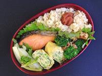 4/3鮭弁当 - ひとりぼっちランチ