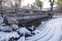 雪の京都2018 淡雪積もる北野天満宮 - 花景色-K.W.C. PhotoBlog