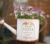 お花が次々と✿*:・゚ - Fabulous days*