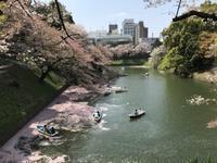 東京観光はスニーカーで - アメリカ輸入のシール♪住所/名前/お好きな文字を印刷してお届け♪アドレスラベルです。