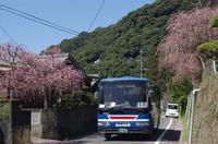 学校前(田代・尾原線) - リンデンバス ~バス停とその先に~