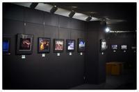写真展 - Hare's Photolog