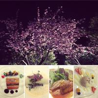友人主催の 90 PLUS WINE CLUBのお花見会ディナーが、国際文化会館でありました。 - 黒豆日記