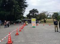 新宿御苑に来てます。外国人が多いですね。入り口では荷物検査 - 設計事務所 arkilab