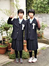 いよいよ中学生 - hibariの巣