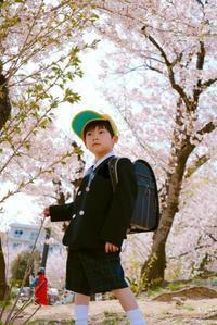 ピカピカの1年生 - がちゃぴん秀子の日記