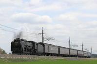 D51-498 - EH500_rail-photograph