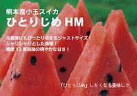 夢スイカ小玉スイカ「ひとりじめHM」平成30年度の初出荷に向け試し割りで今年も驚きの糖度! - FLCパートナーズストア