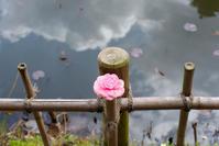 カラフルな季節☆彡 - DAIGOの記憶