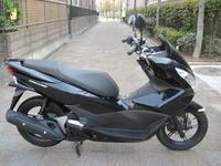PCX入荷 - バイクの横輪