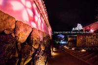 姫路城夜桜 - シセンのカナタ