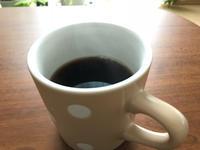 ブラジル7日目 - 植物と、コーヒーと。