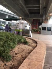 通勤駅ー平常に戻る(5日早く) - アバウトな情報科学博士のアメリカ