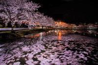 咲き散り舞う(^_-)-☆🎶 - 【♪心に残る情景♪(^ε^)-☆Chu!!】