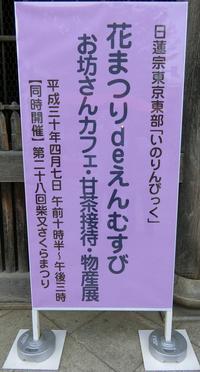 4月7日(土)いのりんぴっくとさくらまつり - 柴又亀家おかみの独り言