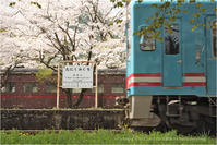 桜と鉄道の風景#5 - あ お そ ら 写 真 社