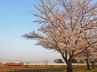 春のカシオペア紀行 - 8001列車の旅と撮影記録