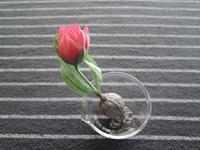 布花 原種系チューリップ 完成 - 布花作りはじめました
