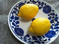 レモンと柑橘の話 - Minha Praia